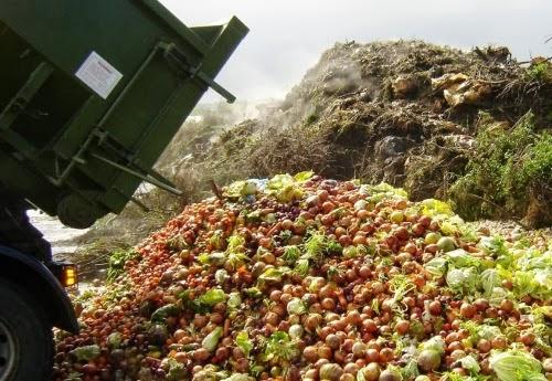 desperdicio-alimentos-comida