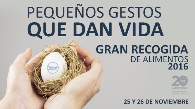 banco-alimentos-iv-campana-recogida_966515306_116066793_667x375
