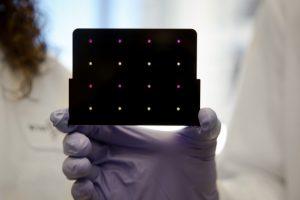 Test de diagnóstico de zika desarrollado por el MIT. Imagen de Wyss Institute at Harvard University.
