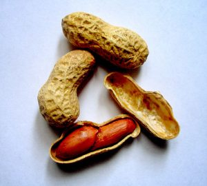 Cacahuetes. Imagen de Wikipedia.