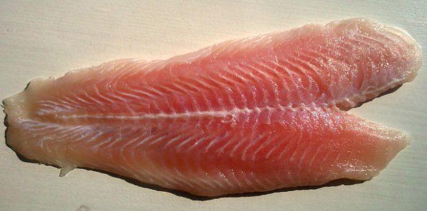 Filete de panga. Imagen de Wikipedia.