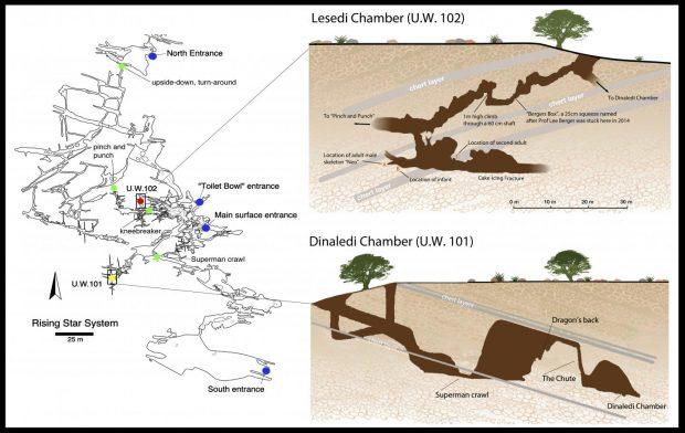 Esquema de la cueva de Rising Star, donde se han hallado los restos del 'Homo naledi'. Imagen de Marina Elliott/Wits University.