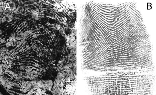 A la izquierda, huella dactilar recuperada de una mochila de los atentados del 11-M. A la derecha, huella dactilar de Brandon Mayfield en el archivo del FBI. Imagen de Science.