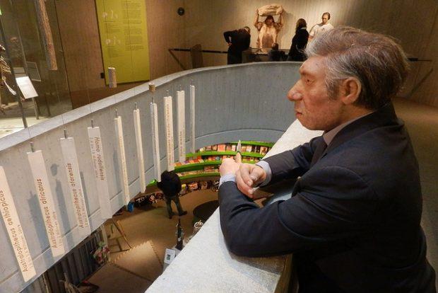Recreación de un neandertal en el Museo Neanderthal. Imagen de suchosch / Flickr / CC.