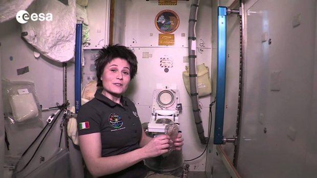La astronauta italiana Samantha Cristoforetti explica el funcionamiento del retrete de la ISS. Imagen de ESA.