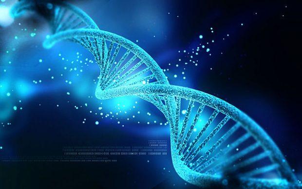 ADN. Imagen de Nogas1974 / Wikipedia.