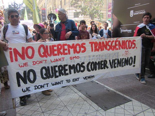 Manifestación antitransgénicos en Chile. Imagen de Mapuexpress Informativo Mapuche / Wikipedia.