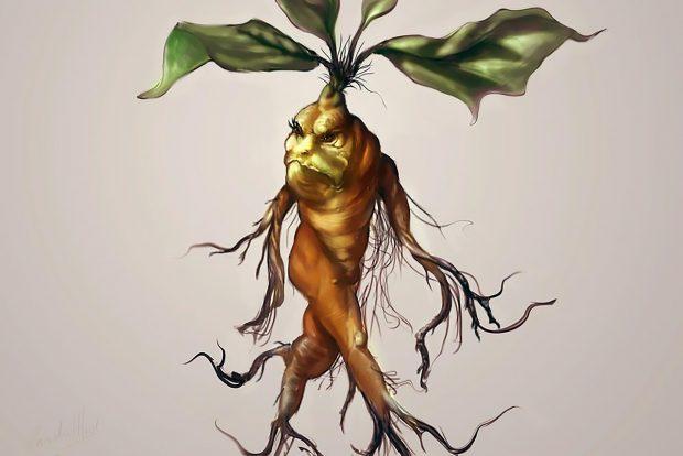 Ilustración fantástica de la raíz de la mandrágora, un ejemplo del principio de correspondencias analógicas. Imagen de pixabay.