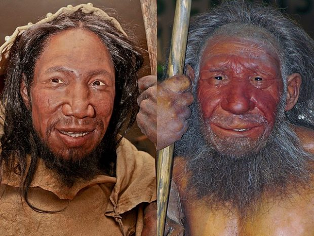 Reconstrucciones de un Homo sapiens de hace unos 40.000 años (izquierda) y un neandertal (derecha), ambas en el Museo Neanderthal de Alemania. Imagen de The Nature Box / Wikipedia.