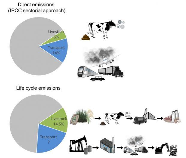 Gráfico de la FAO comparando las emisiones directas y del ciclo de vida de la ganadería y el transporte. Imagen de FAO.