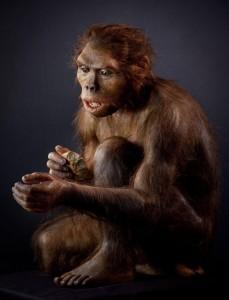 Recreación de un individuo de la especie Homo habilis, realizada por Elysabeth Daynès. Este ejemplar se exhibe en el Museo de la Evolución Humana de Burgos.