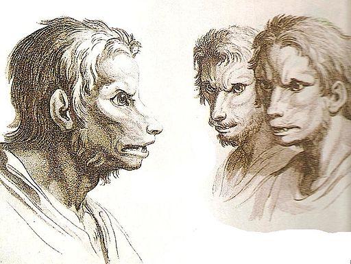 Representación de una posible transformación en hombre lobo./Wikimedia commons