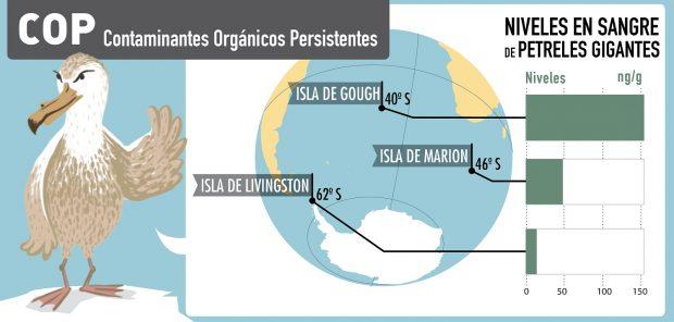 Vriaciones en la presencia de Contaminantes Orgánicos Persistentes en plasma de petreles gigantes de distintas colonias de la región Antártica. Ilustración cortesía de Olga de Dios.