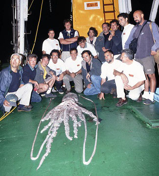 tripulacion con el calamar editado