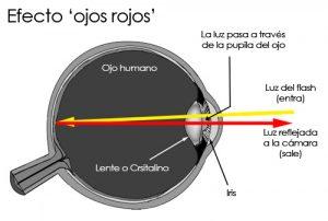 Funcionamiento del fenómeno 'ojos rojos'. / Photokonnexion