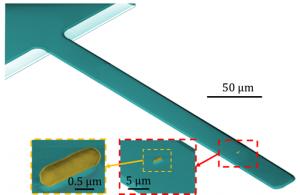 Bacteria en nanosensor