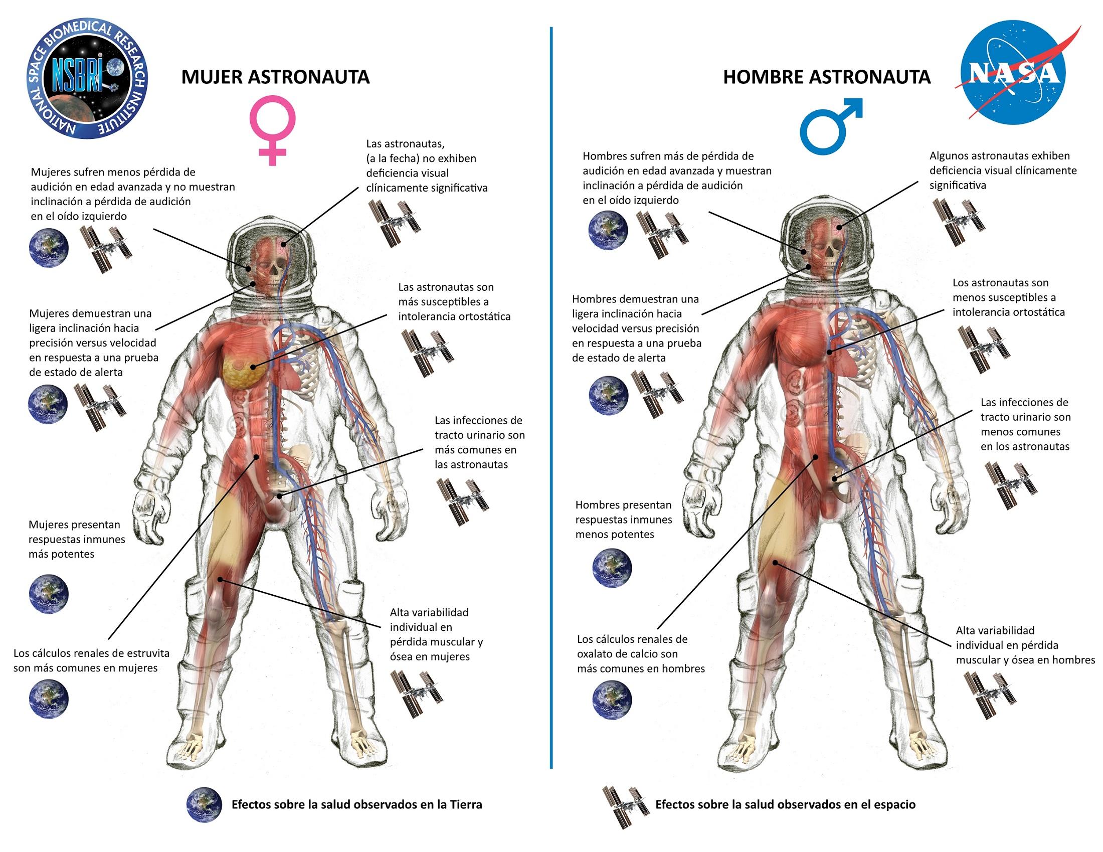 Cuerpo humano soportar presión