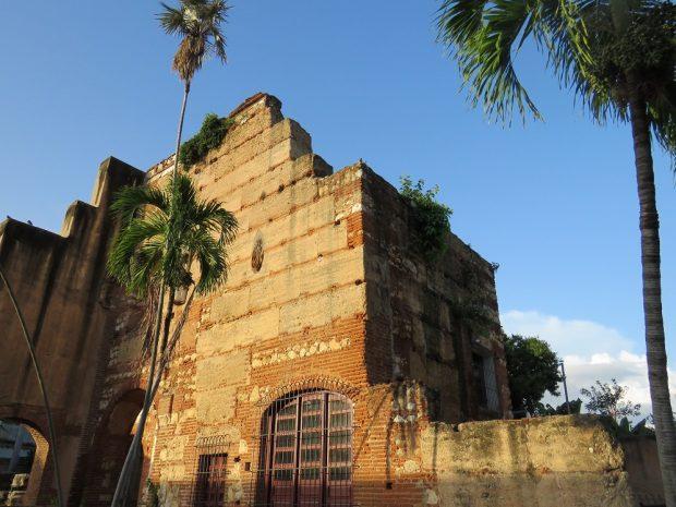 Hábitat de cría usado por las poblaciones de loros urbanos en ciudades de República Dominicana. /Álvaro Luna