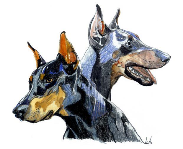 Ilustración de Irene Cuesta