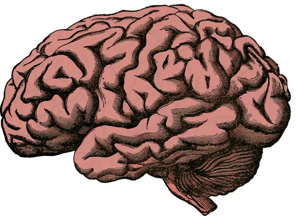 Hay bastante consenso en que convergen tanto factores genéticos como ambientales en la aparición de la esquizofrenia.