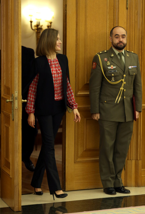 Spanish Queen Letizia during an audience with the Platform of Children's Organizations at Zarzuela Palace in Madrid on Friday 8, January 2016