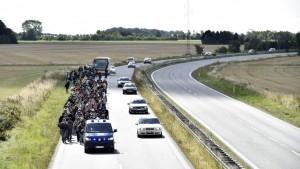 Un grupo de refugiados camina por una autovía por el norte de Dinamarca. Foto: EFE/Archivo