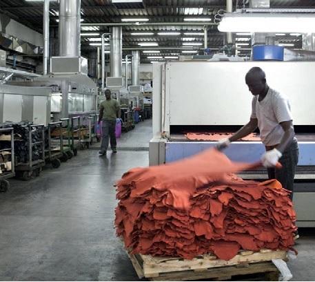 Trabajadores senegaleses en la industria del cuero en Italia / Setem