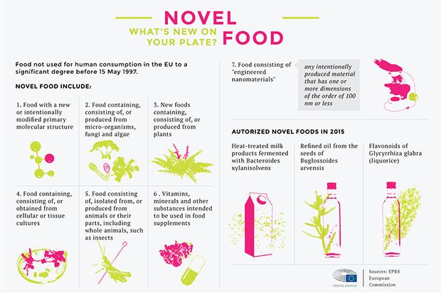 Novel-food-infog