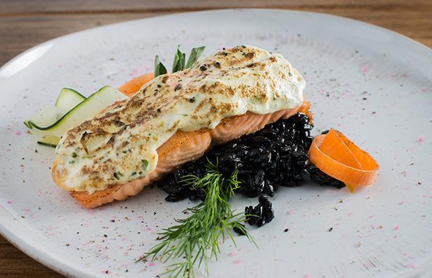 SANTO-salmon