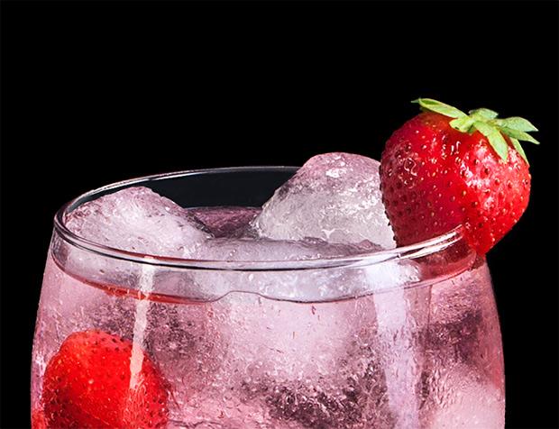 Gin-Puerto-Indias-01