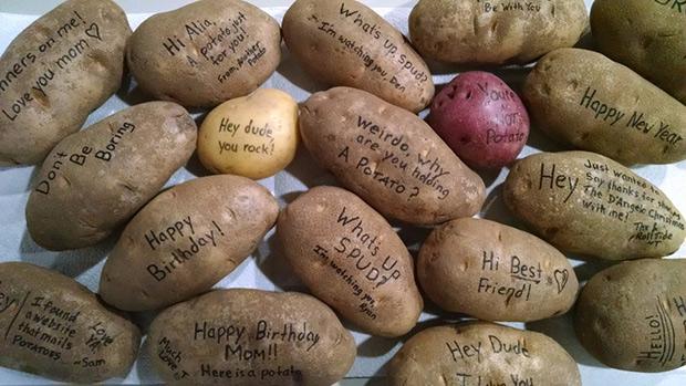 Mistery-potato-01