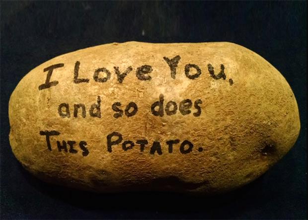Mistery-potato-02