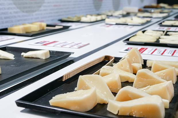 Alimentaria-queso-10