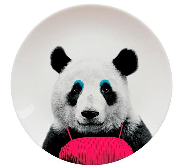 plato-panda_1