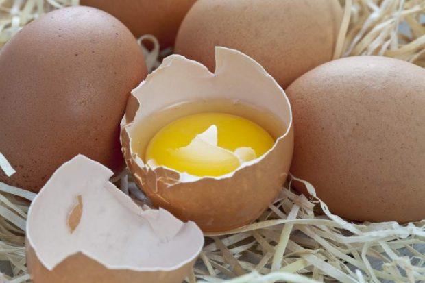Se pueden congelar los huevos la gulateca - Se pueden congelar las almejas crudas ...