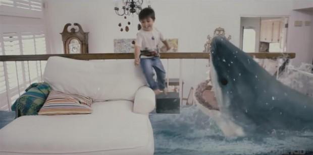 James vs Shark 2015