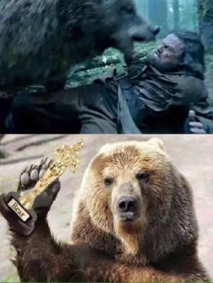 DiCaprio Oscar oso meme
