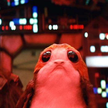 Porgs - Star Wars: Los últimos jedi