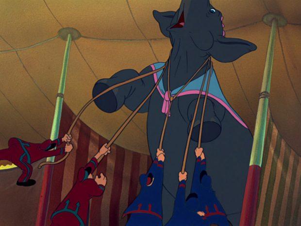 Dumbo cólera