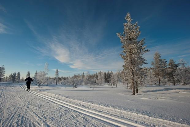 Laponia (GTRES)