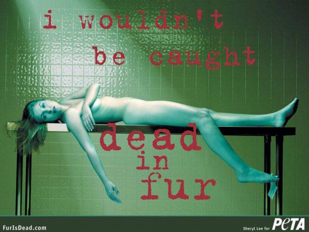 Sheryl Lee en una campaña de PETA contra el uso de las pieles.