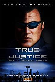 steven-seagal-true-justice