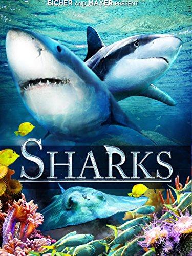 sharks-3d