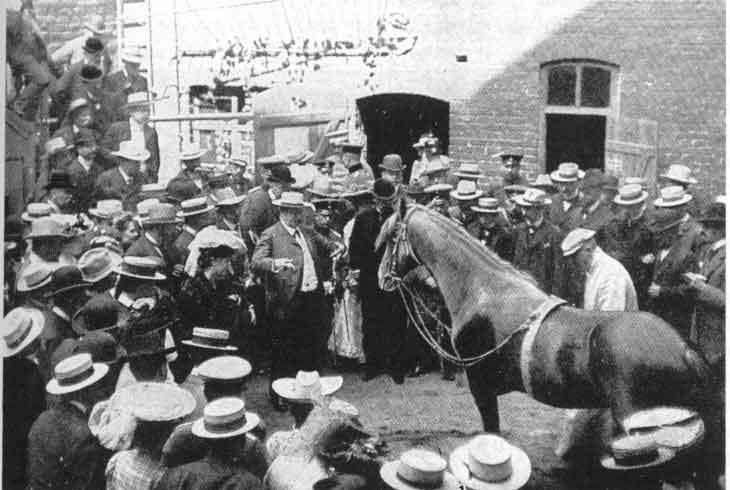 El caballo Hans durante una actuación