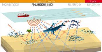 Primera fase de exploración - Adquisición sísmica