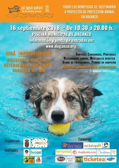 Al agua patas un d a en la piscina con el perro a favor de los animales abandonados en - Piscinas de patas ...