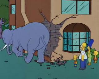 'Pisoni', otro elefante demoledor.