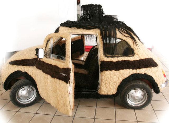 coche_pelo1