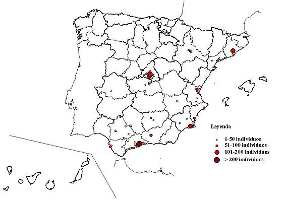 Distribución de la cotorra argentina en 2015. Fuente: SEO/BirdLife