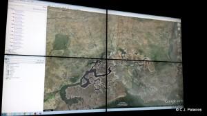 Localización del águila Mandela en Gambia